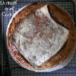 frontal pan