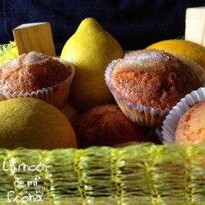 magadalenas limón final